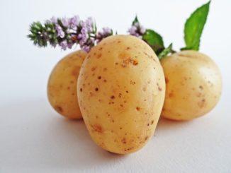 bramborové placky